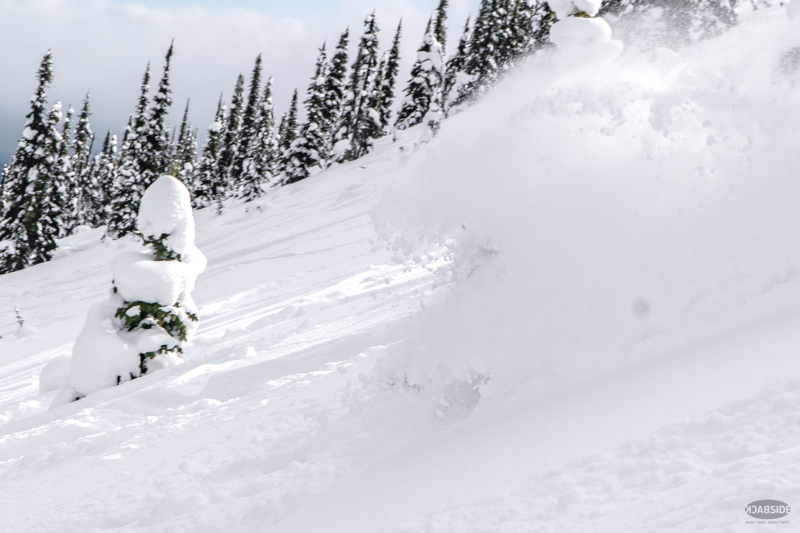 powder-cloud-cariboo-cat-skiing-rad-media